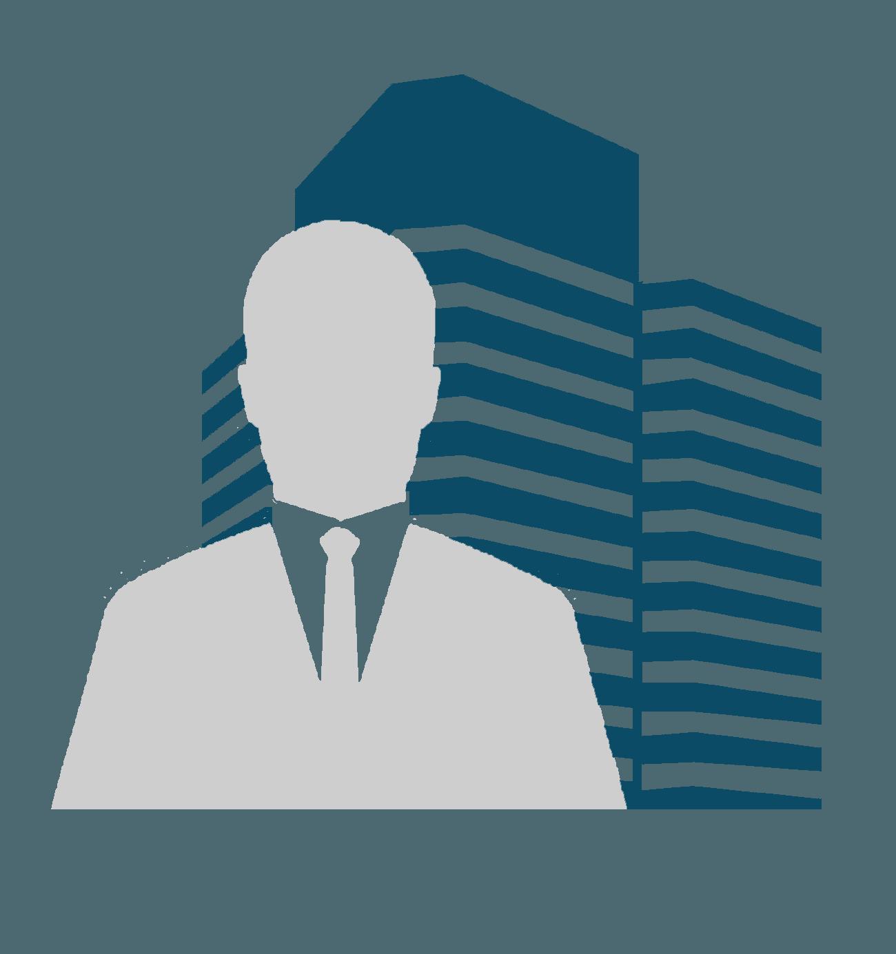 ICON_executivo